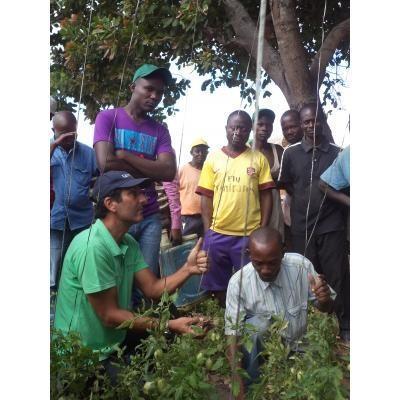 Capacitación en prácticas agrícolas
