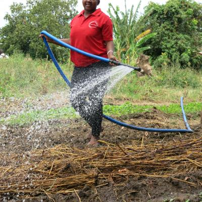 Basic irrigation solution in use (hip-pump)